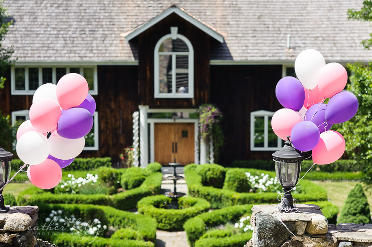 ct birthday party photographer in litchfield county connecticut
