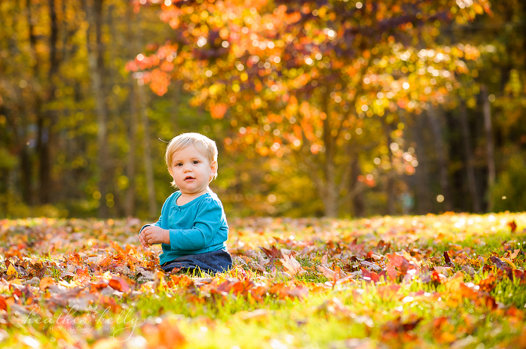 ct fall days ct newborn maternity family photographer