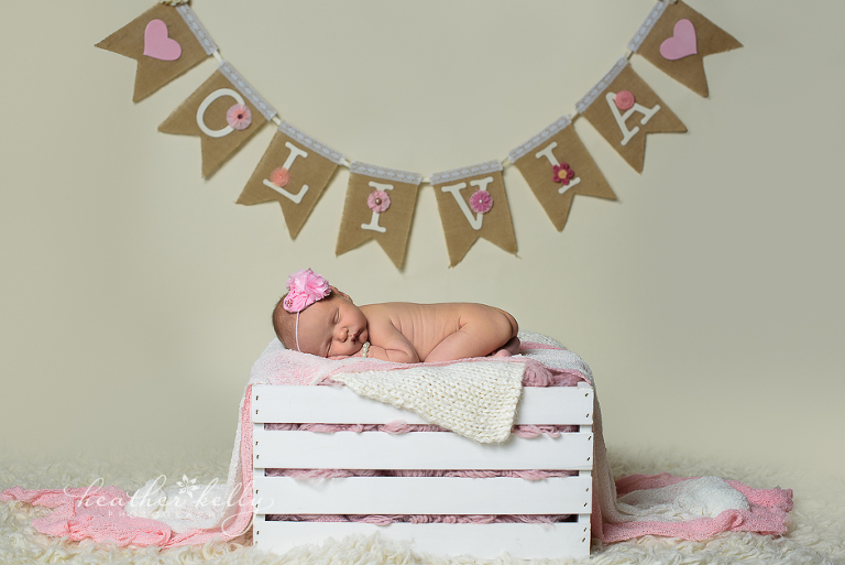 norwalk ct newborn photographer ct newborn photographer