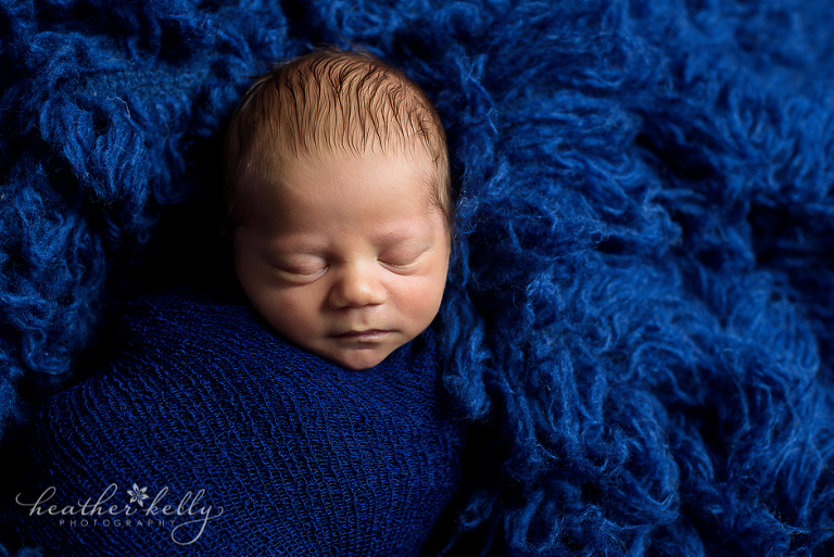 professional ridgefield ct newborn photographer professional ct newborn photographer