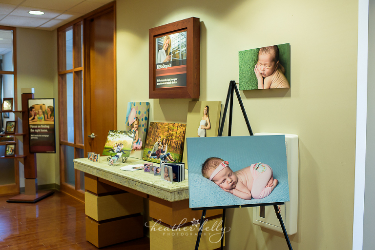brookfield newtown savings bank business of the month ct newborn photographer