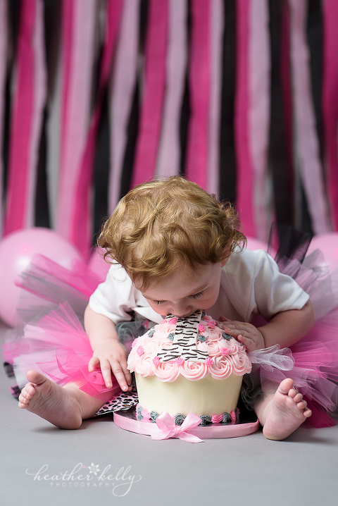 trumbull ct cake smash photography ct cake smash photographer
