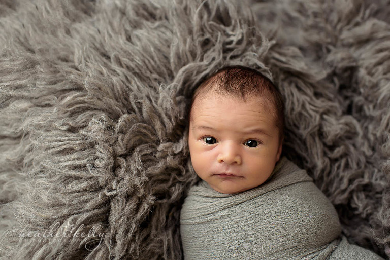 gray flokati and newborn boy wrapped in gray photo fairfield newborn ct